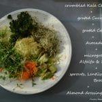 Kiemen Salade