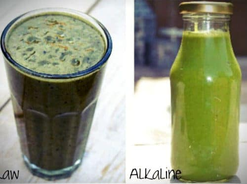 10 days raw alkaline detox online