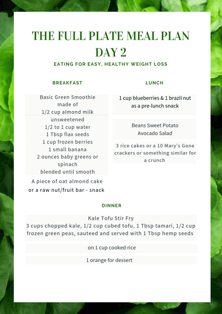 plant based weight loss day 2