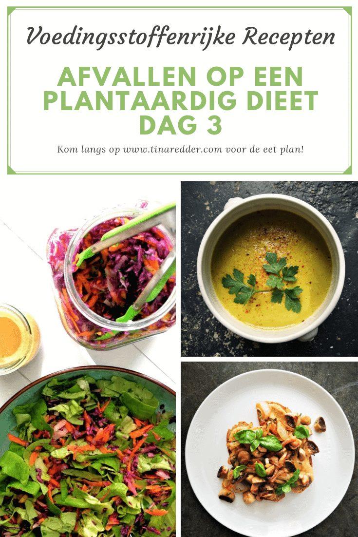 afvallen op een plantaardig dieet dag 3