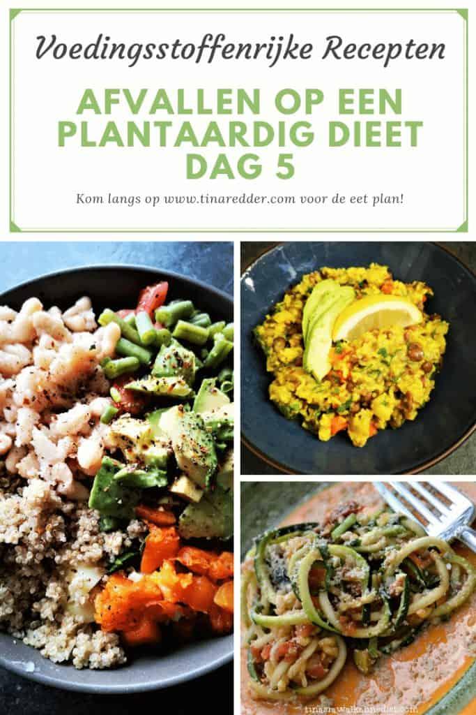 afvallen op een plantaardig dieet dag 5