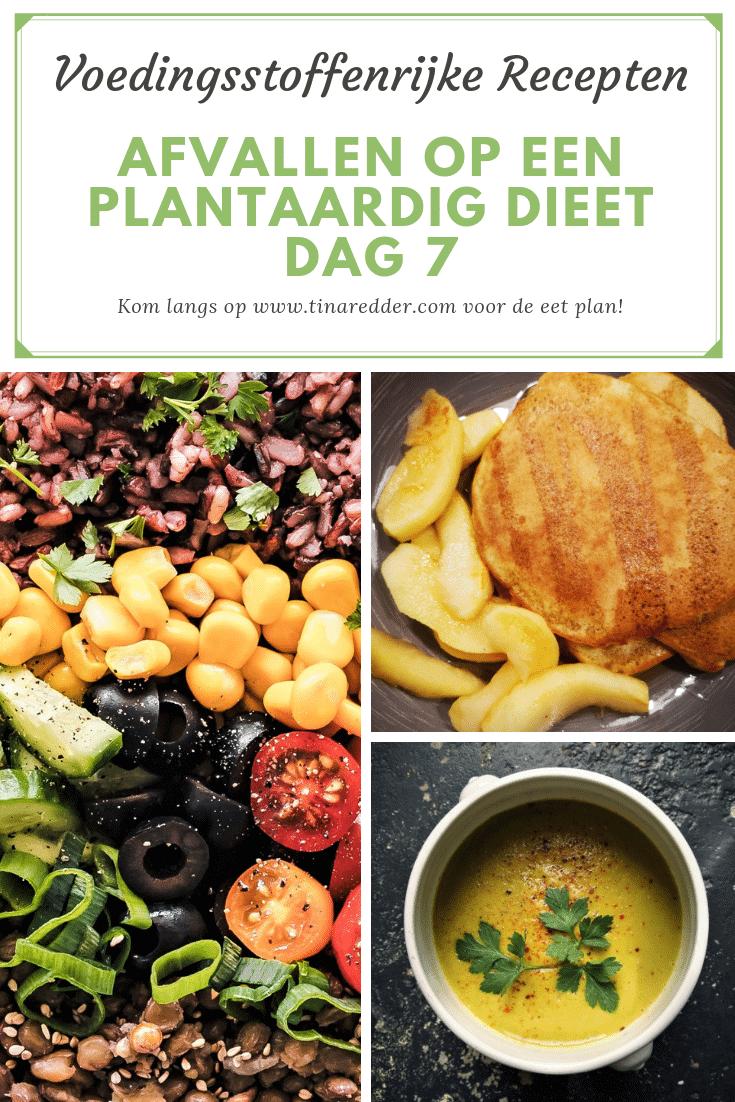 afvallen op een plantaardig dieet dag 7
