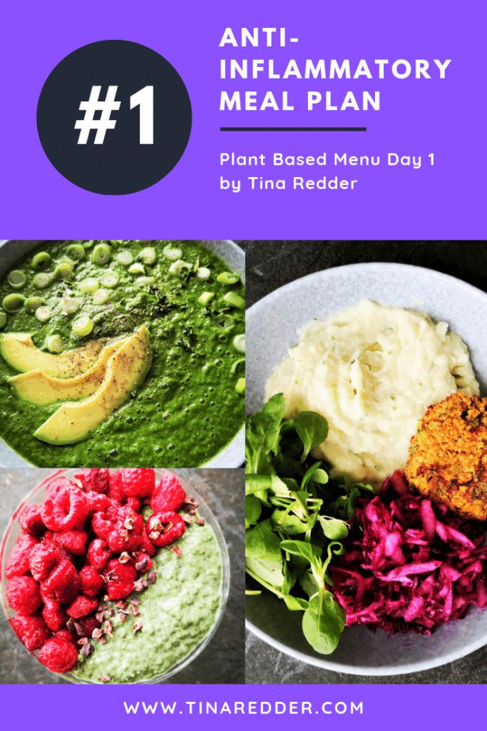 anti-inflammatory meal plan day 1