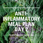anti-inflammatory meal plan day 2