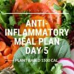 anti-inflammatory meal plan day 5