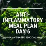 anti-inflammatory meal plan day 6