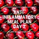 anti-inflammatory meal plan day 7
