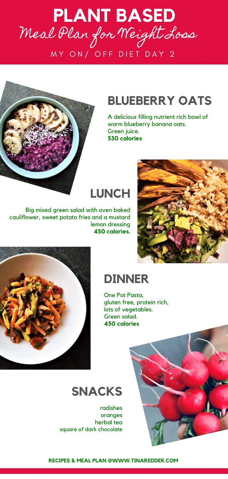 plant based meal plan for weight loss 2