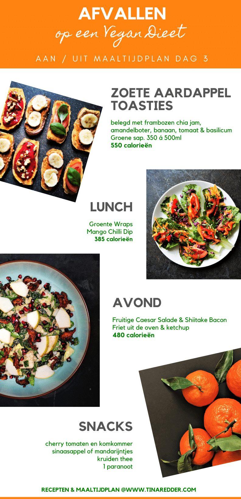 afvallen op een vegan dieet #3