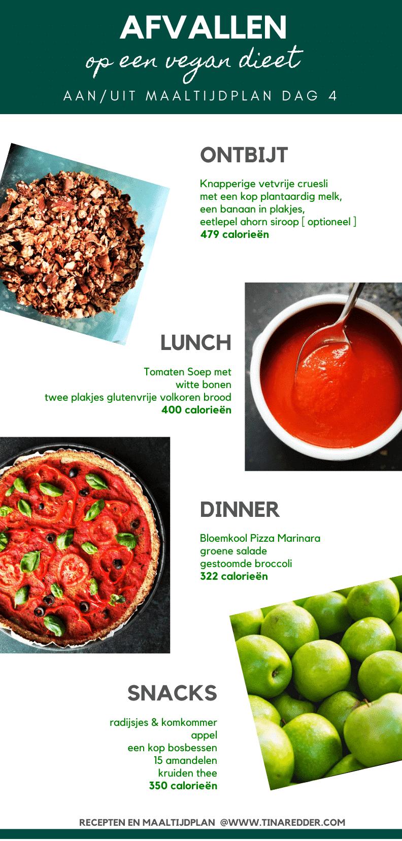 afvallen op een vegan dieet dag 4