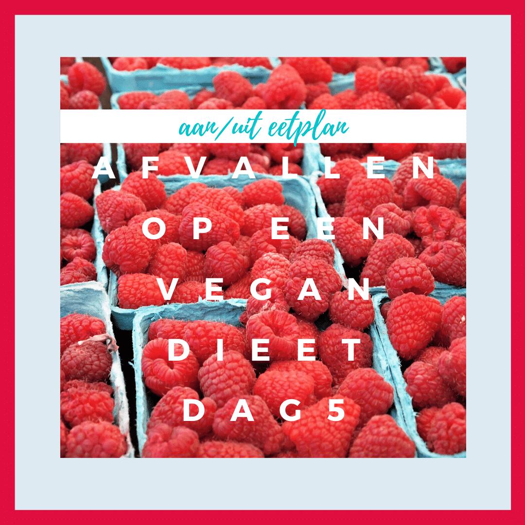 afvallen op een vegan dieet dag 5