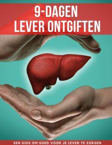 9-dagen lever ontgiften hoofdgids