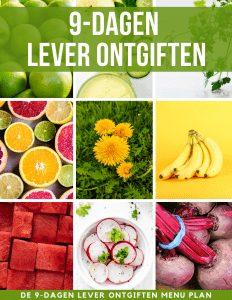 9-dagen lever ontgiften menu plan & recepten