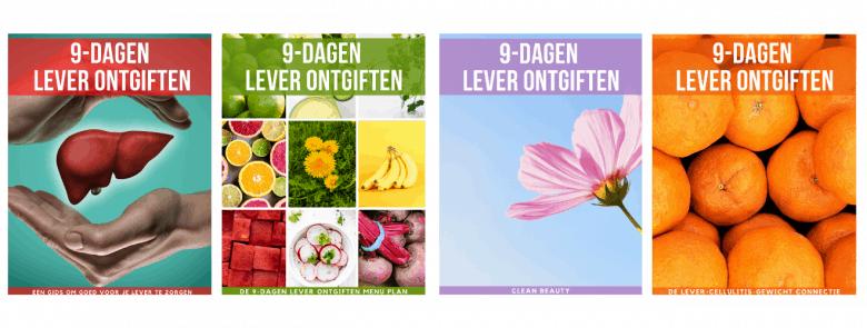 de 4 e-boeken 9-dagen lever ontgiften