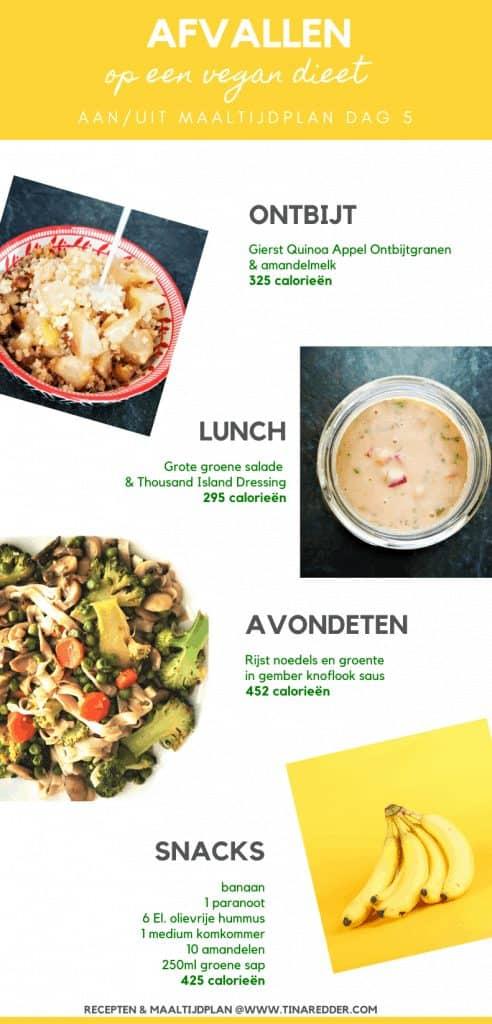 afvallen op een vegan dieet dag 6