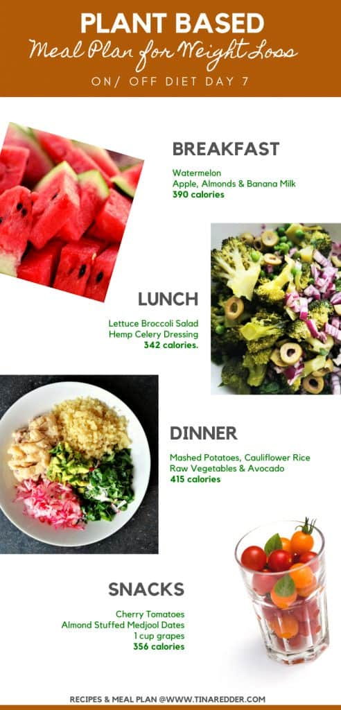 plant based meal plan for weight loss day 7