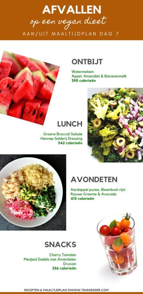 menu afvallen op een vegan  dieet dag 7